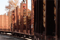Placing Logs on a Railcar